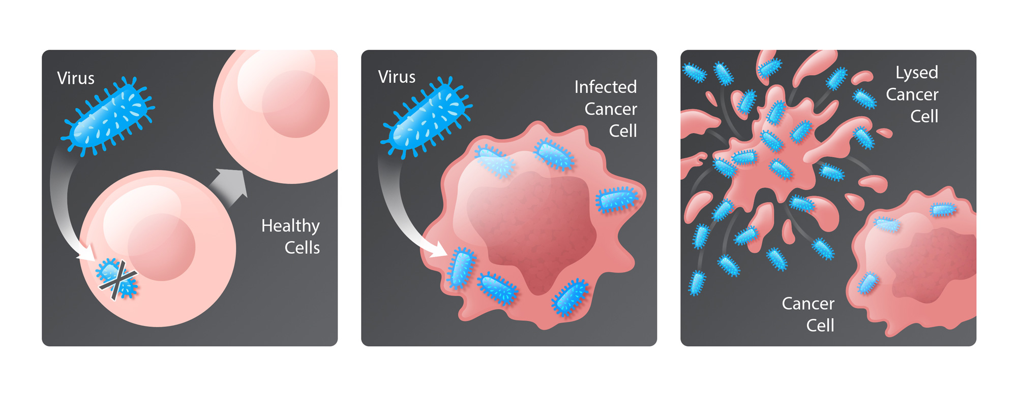 Oncolytic virus cancer therapy